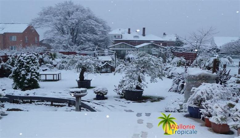 le-jardin-neige